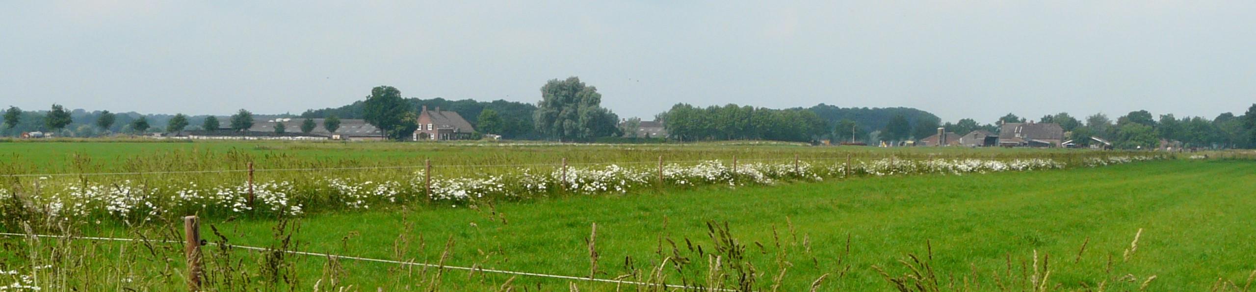 Oprichting ANV Brabantsewal