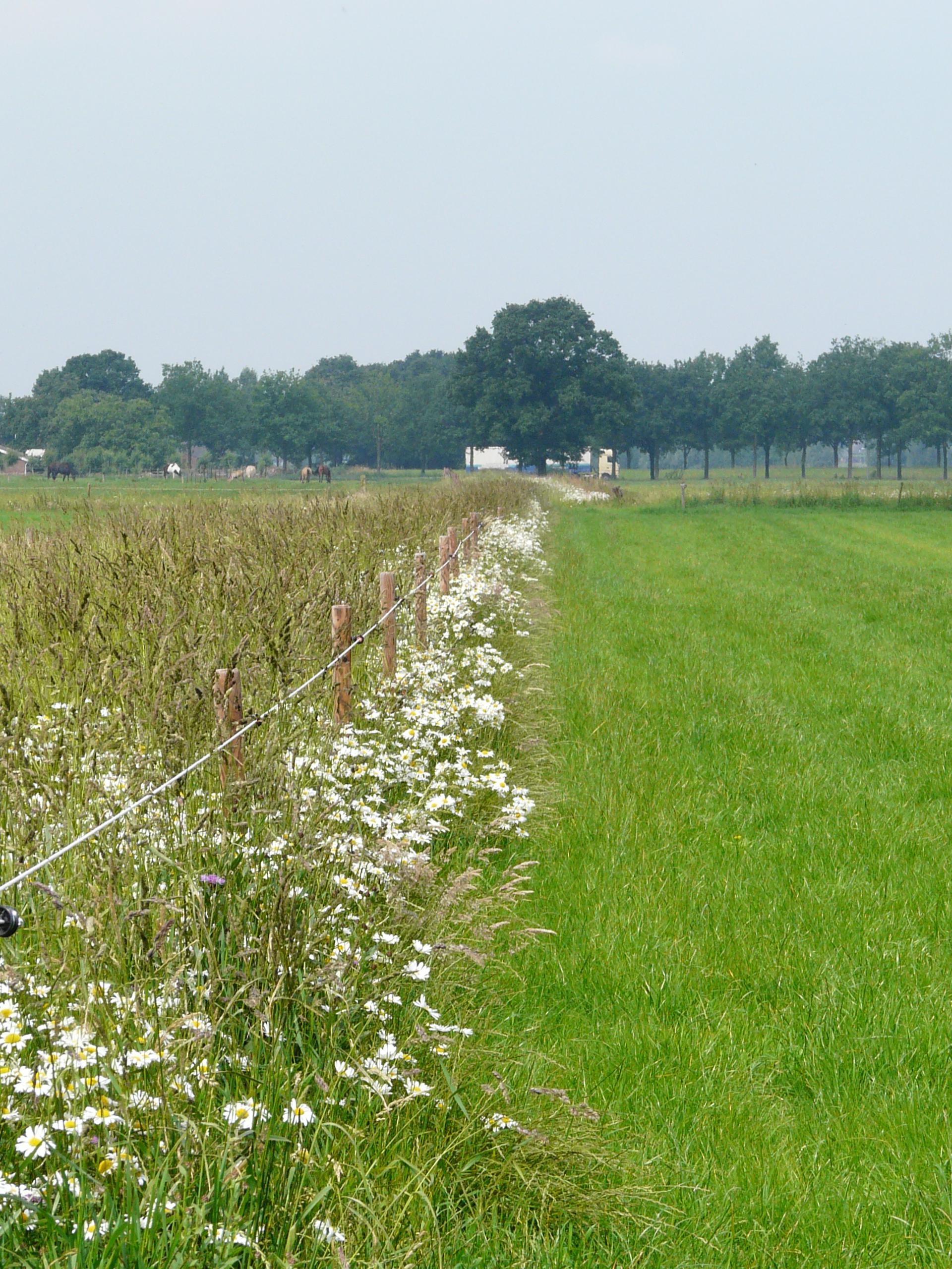 Collectief Agrarisch Natuurbeheer West Brabant